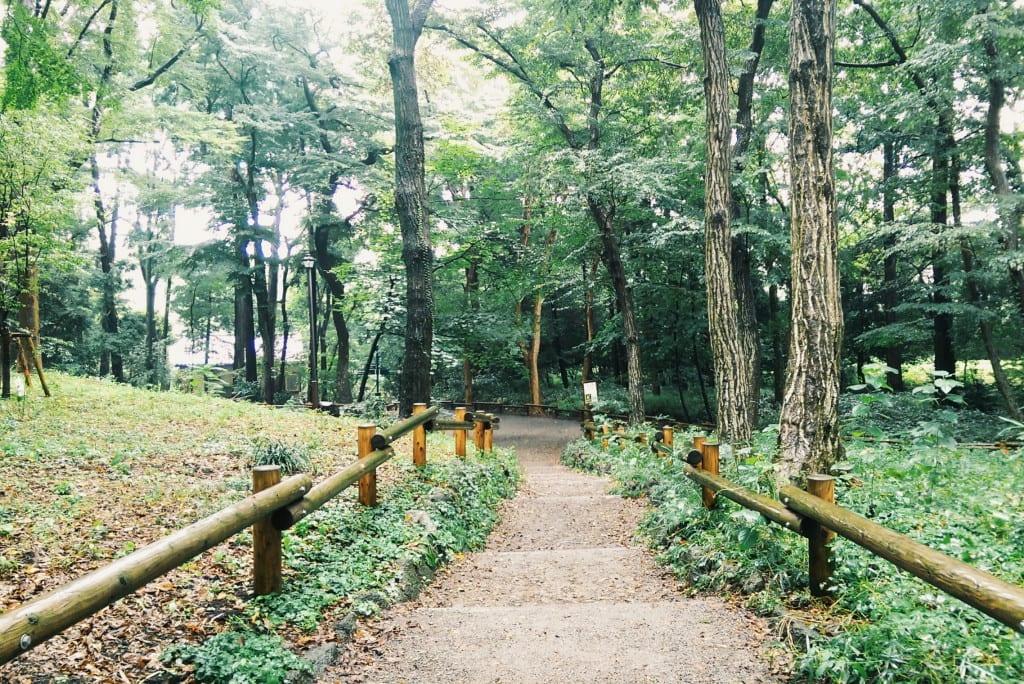 tokyo ghibli museum park
